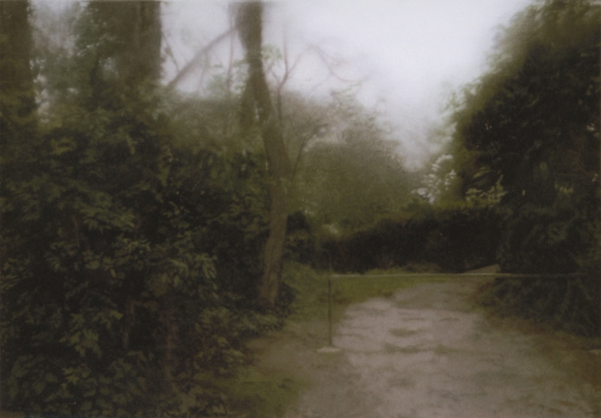 Garden Path 1987 - Gerhard Richter