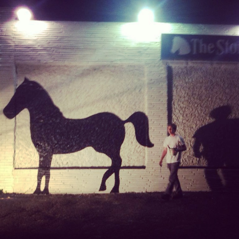 Stone Pony Mural View From A Burrow
