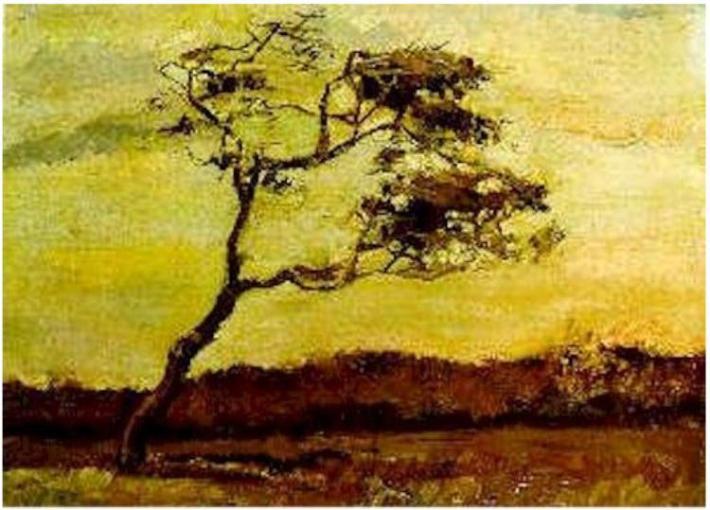 A Wind-Beaten Tree - The Hague, August 1883 - Oil on Canvas - 35 x 47 cm - Vincent van Gogh